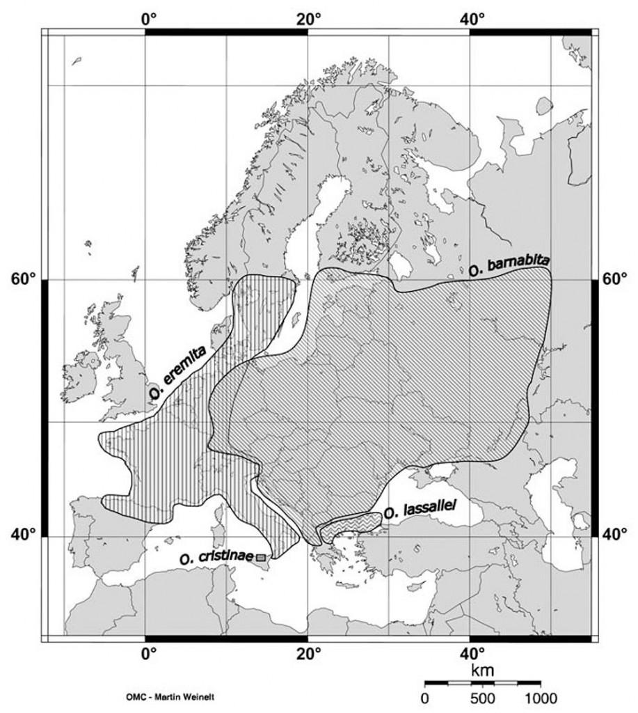 Osmoderma genties rūšių pasiskirstymas Europoje.